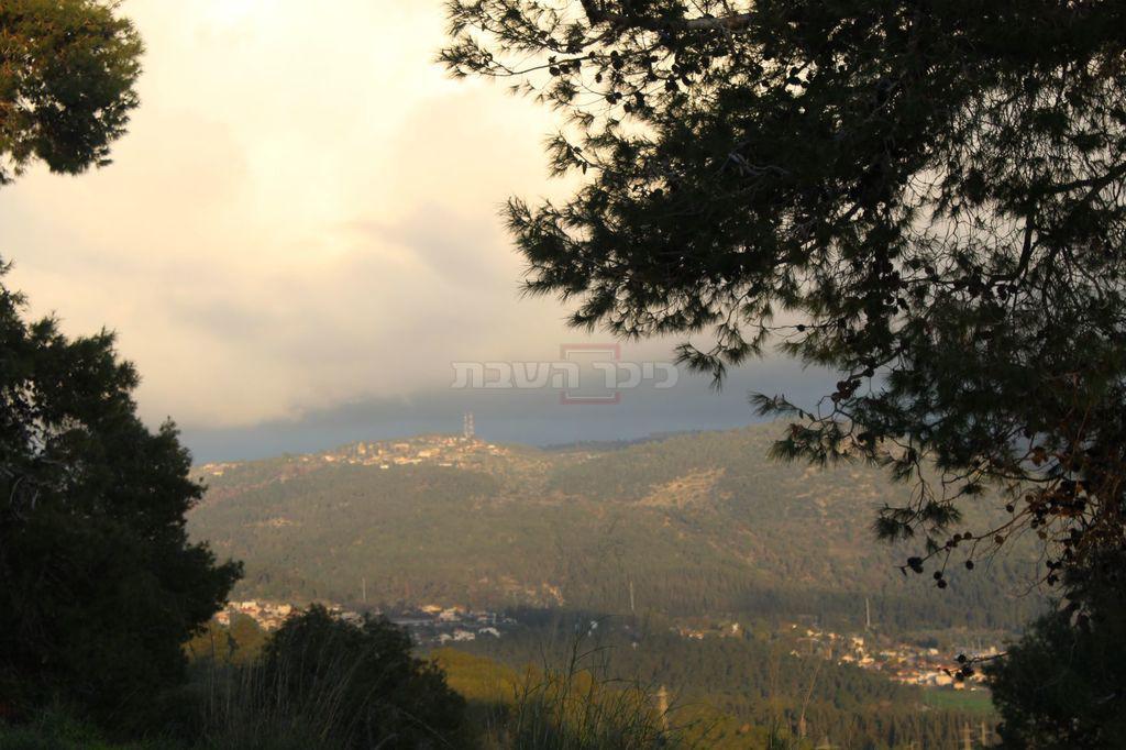 הנוף המטריף הנשקף מ'קבר שמשון' (צילום: ישראל שפירא)