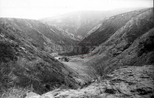 מקום הטבח - באבי יאר (צילום: ארכיון גנזך קידוש השם בני ברק)