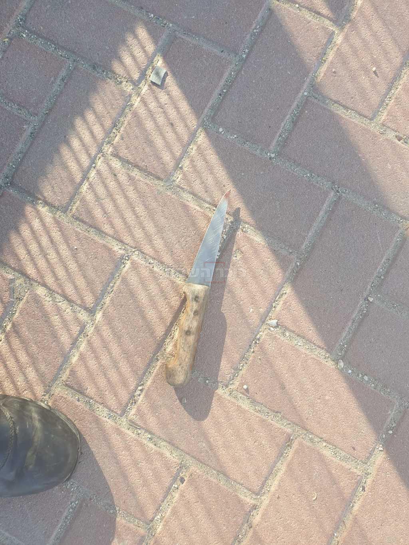 הסכין (צילום: דוברות המשטרה)