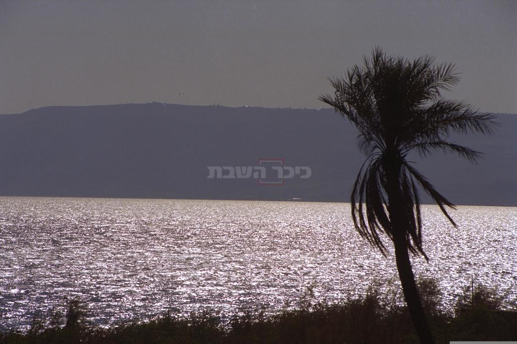 הכנרת בשנת 2002 (צילום: MILNER MOSHE, לע''מ)