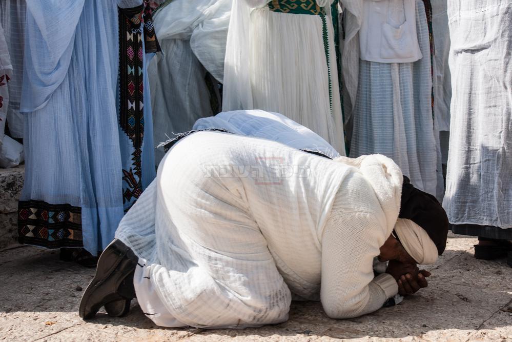 מנשקים את אדמת ארץ ישראל. צילום: שאטרסטוק