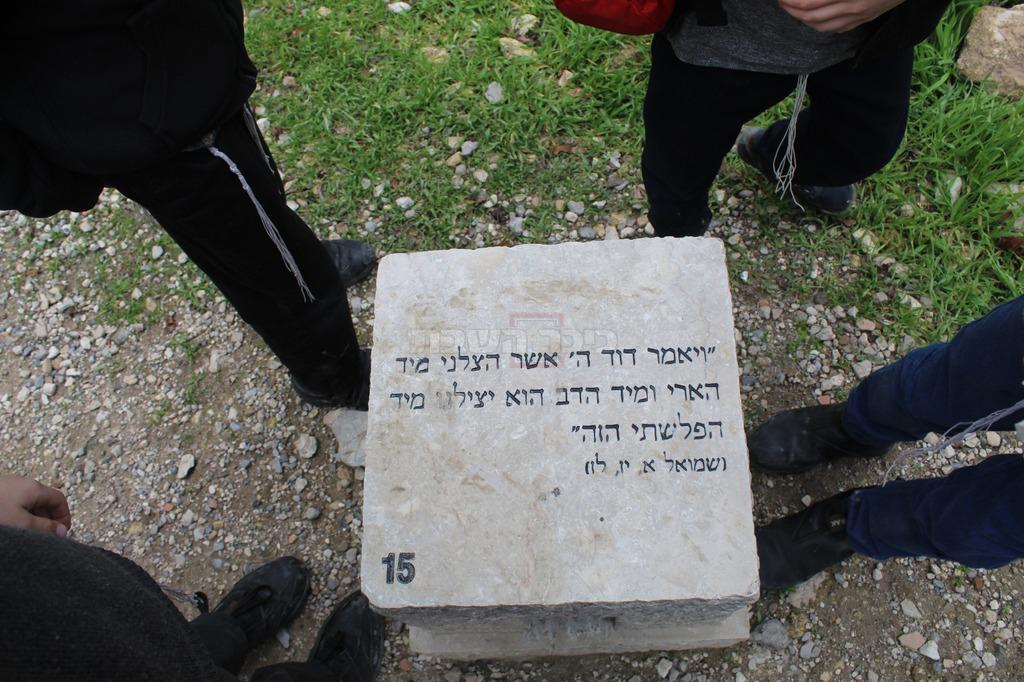 (צילום: ישראל שפירא)