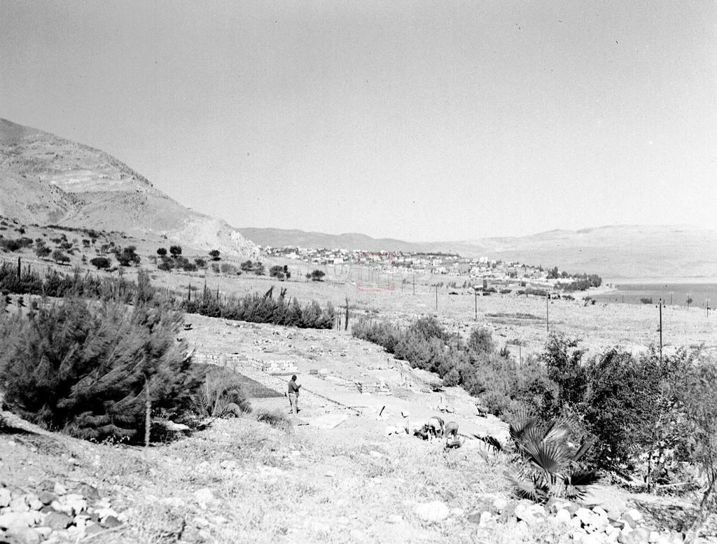 העיר טבריה בשנת 1937 (צילום: KLUGER ZOLTAN, לע''מ)