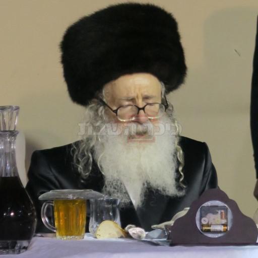 הרבי מאמשינוב (צילום: ארי קופרשטוק)