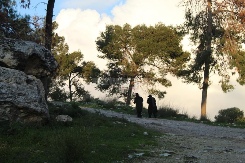 ניסים בלאק ומקורב מתבודדים ביערות 'קבר שמשון' (צילום: ישראל שפירא)
