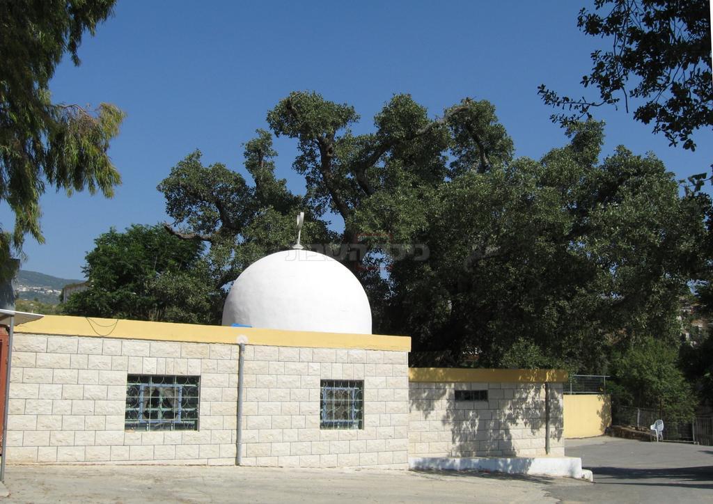 קבר שבואל בן גרשון נכד משה (צילום: ד''ר צבי הר-שפר)