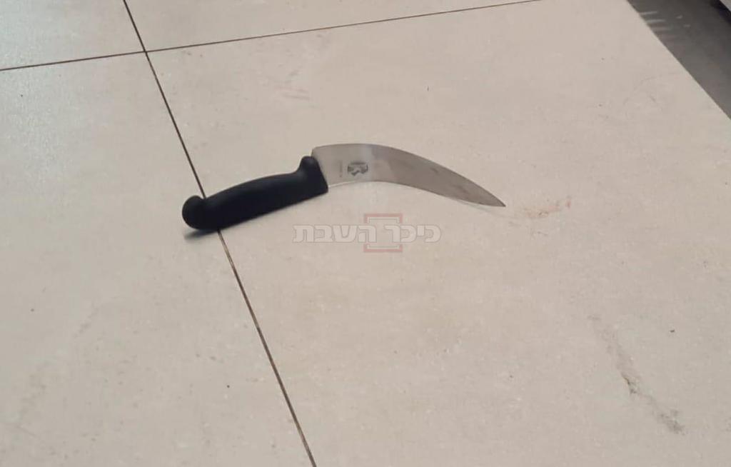 הסכין שבו השתמש המחבל (צילום: דוברות המשטרה)