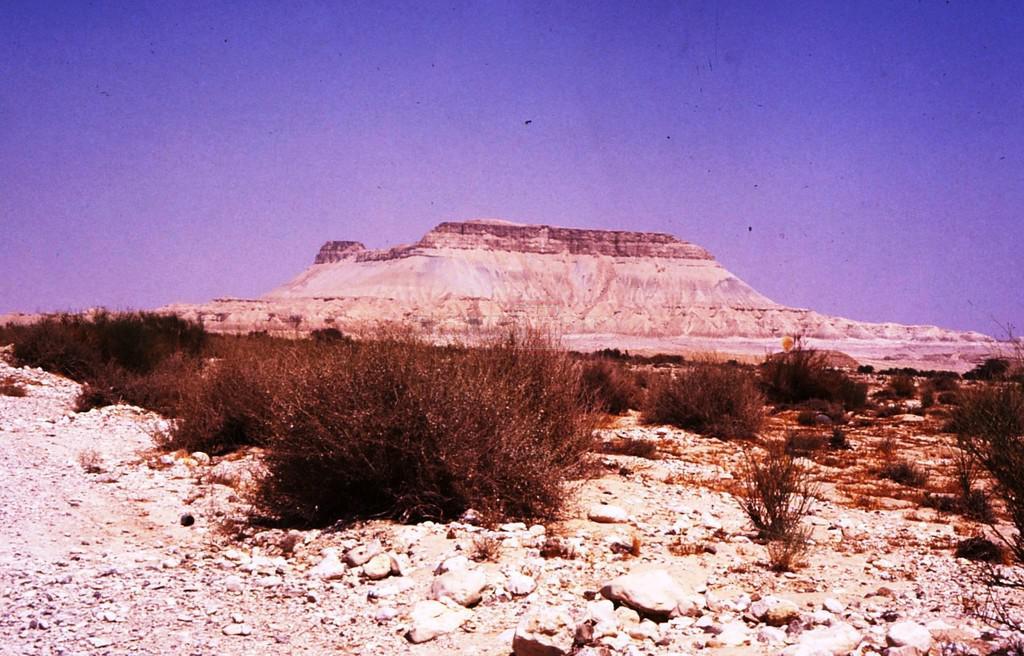 הר צין במבט מנחל צין, הור ההר (צילום: ד''ר צבי הר שפר)