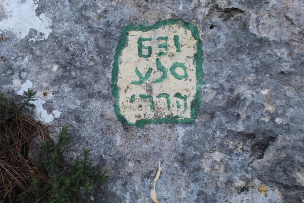 סלע מסתורי בקרבת קבר שמשון הגיבור (צילום: ישראל שפירא)
