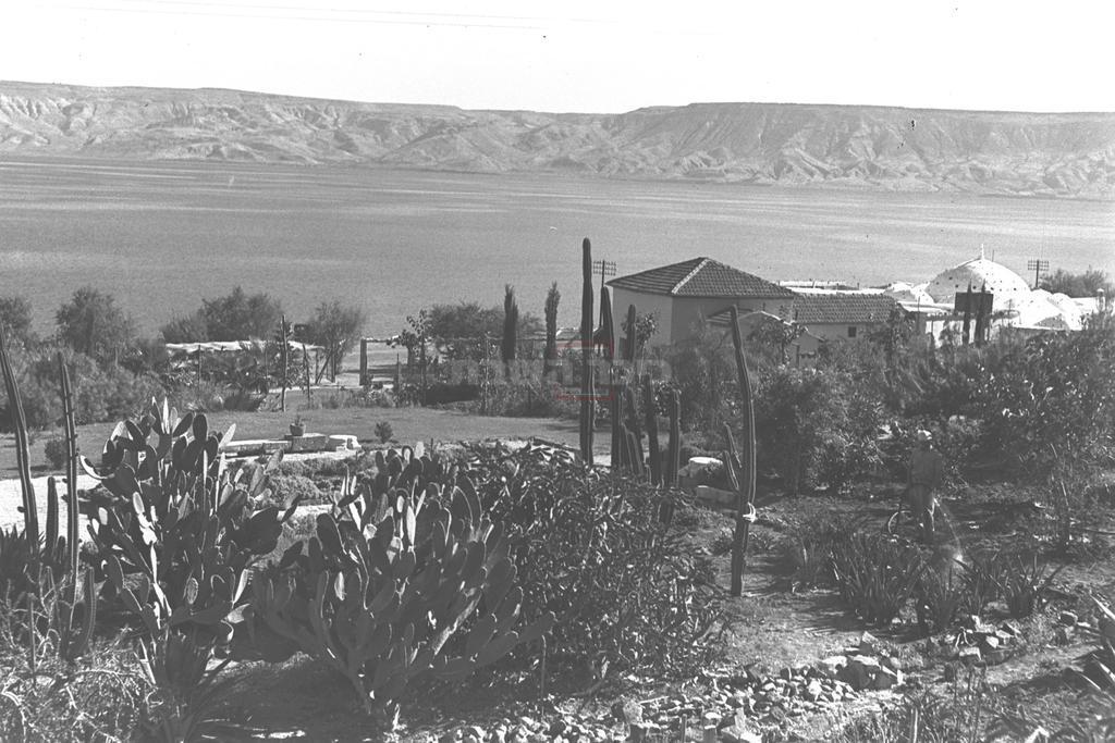 טבריה, 1937 (צילום: KLUGER ZOLTAN, לע''מ)