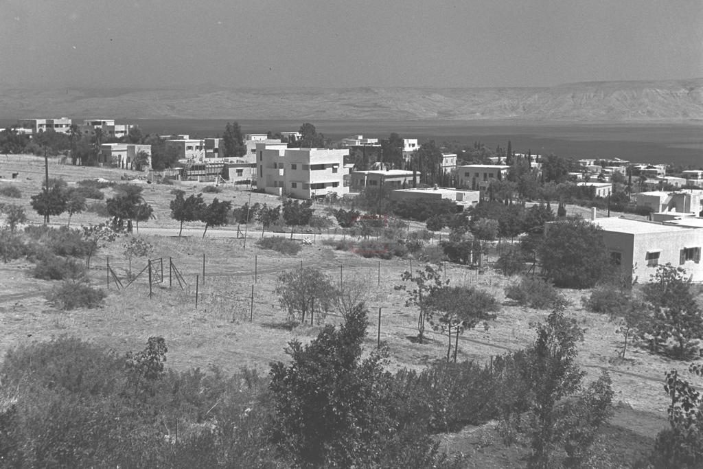 שכונת קריית שמואל בטבריה, 1946 (צילום: KLUGER ZOLTAN, לע''מ)