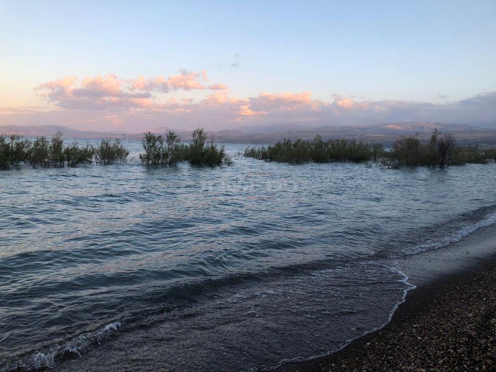 חוף דוגית בכנרת, הבוקר (צילום- קאדם חולית, איגוד ערים כינרת)