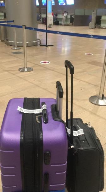 המזוודה הסגולה. (צילום: מיכל ולקין)