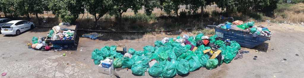 אשפה שהושארה על ידי מטיילים בכפר נחום ונאספה על ידי פקחי רשות הטבע והגנים (צילום: יהונתן יחזקאל)