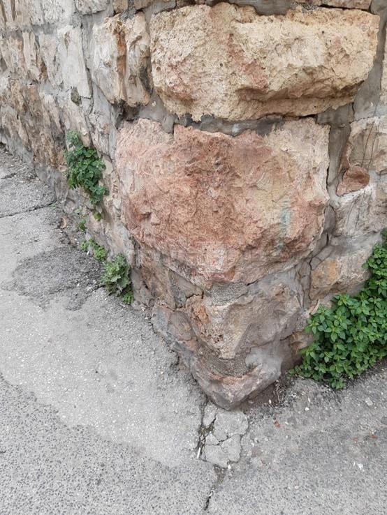 האבן מבית המקדש (צילום: שמחה שפירא - בלנגס)