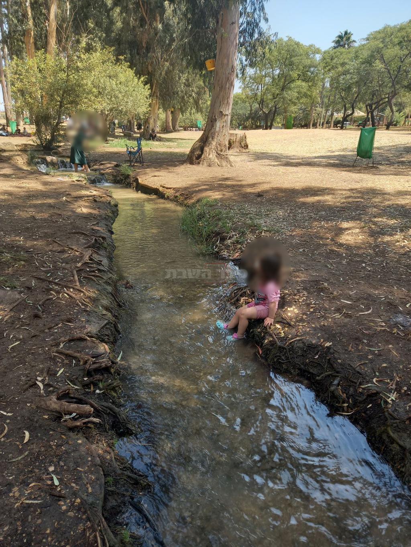 תל אפק (צילום: ישראל שפירא)