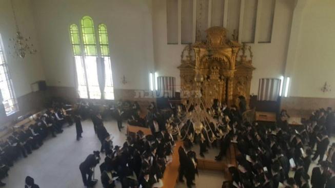 צילום: כיכר השבת