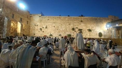 רחבת הכותל המערבי, הבוקר - הומה במתפללים (צילום: חדשות הכותל המערבי)