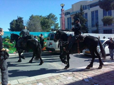 הפרשים מחוץ לבית המשפט (צילום: באדיבות המצלם)