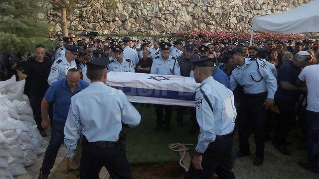 (צילום: גיל יוחנן, ynet)
