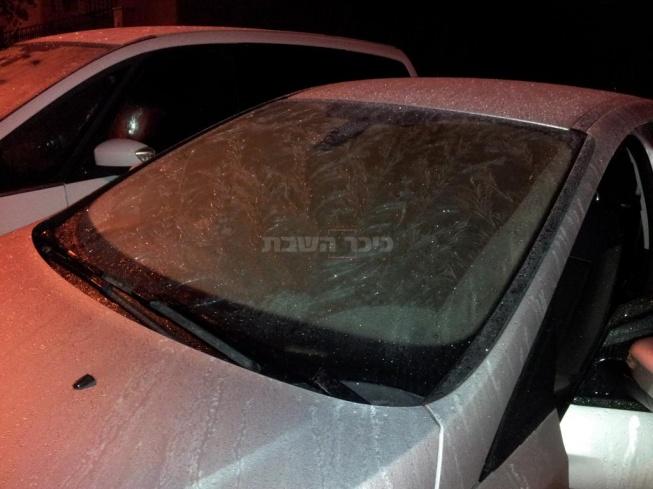 קרח על השמשה הקדמית בצורת הדסים, אלעד (צילום: יעקב)