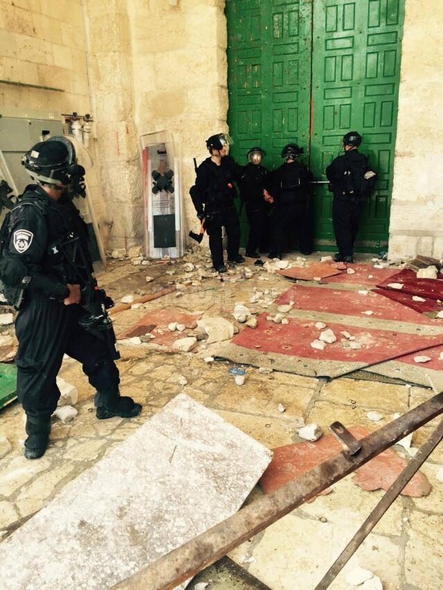 (צילום: חטיבת דובר המשטרה; וידאו - מתוך ynet)