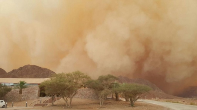 סופות החול באילת (צילום: זוהר בן שטרית רשות הטבע והגנים)