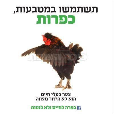 מתוך הקמפיין (צילום מסך)
