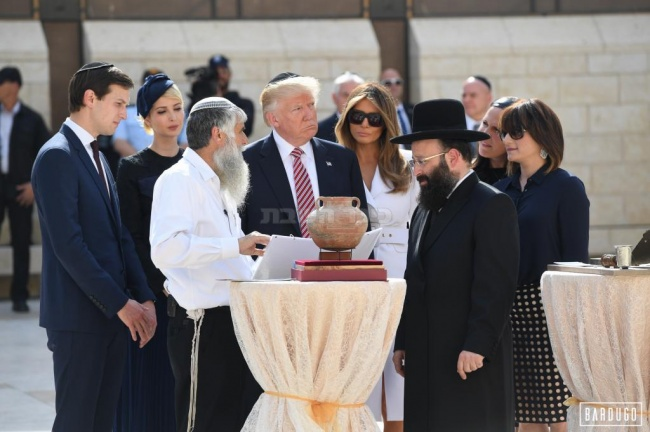 (צילום: צוות הצילום של ישראל ברדוגו)