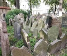 החצר האחורית של בית העלמין היהודי העתיק
