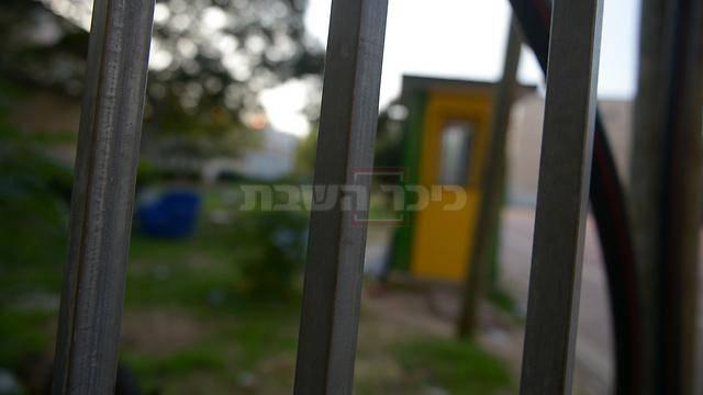 (צילום: shutterstock; וידאו: מתוך ynet)
