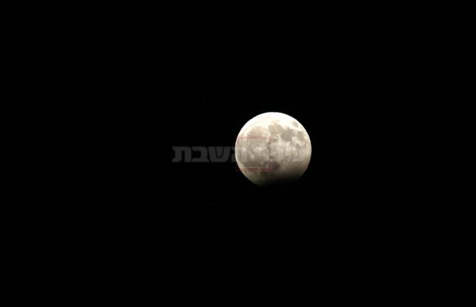 (צילום: וויסאם השלמון, פלאש 90)