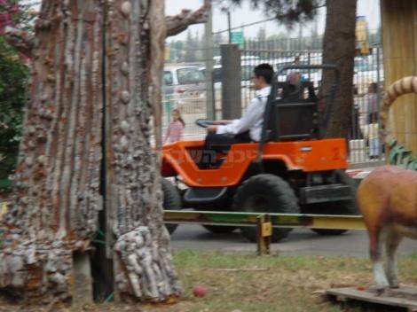 צולם בפארק נחשונית ביום לציבור החרדי (צילום: חנן שפריר)