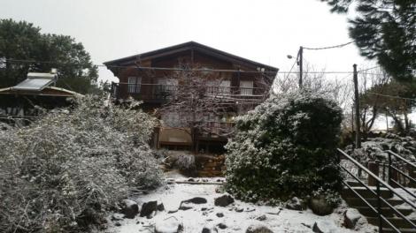 שלג קל בנמרוד, ברמת הגולן (צילום: לילך אשתר)