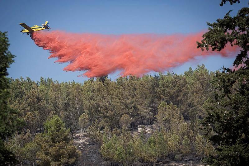 גם בלטרון נאבקו כוחות הכיבוי באש (צילום: הדס פרוש, פלאש 90)