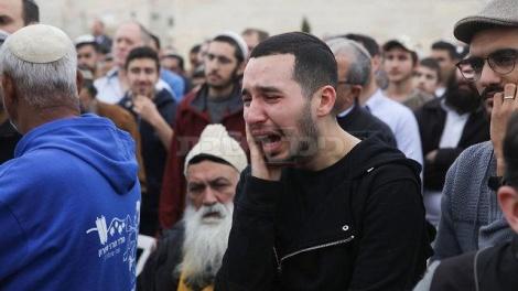 (צילום: אוהד צויגנברג, ynet)