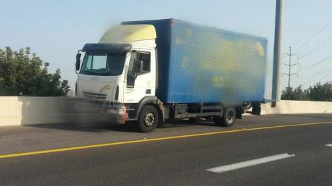 המשאית בצד הדרך לאחר שהושבתה (צילום: דוברות המשטרה)