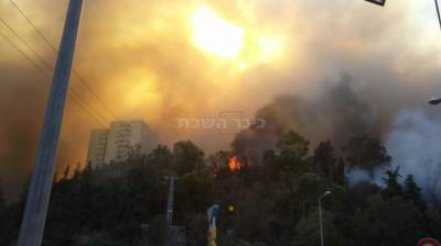 האש בשכונת רוממה (צילום: כבאות והצלה מחוז חוף)