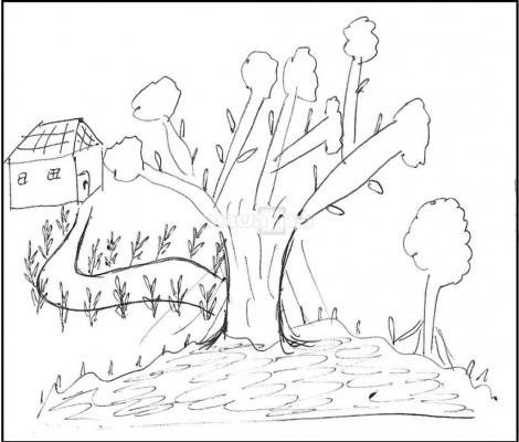 העץ שצייר ב.נ.