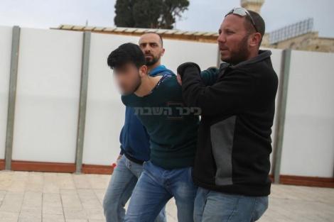 (צילום: חיים גולדברג - כיכר השבת)
