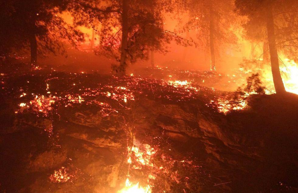 השריפה בדולב (צילום: דוברות כב''ה מחוז יו''ש)