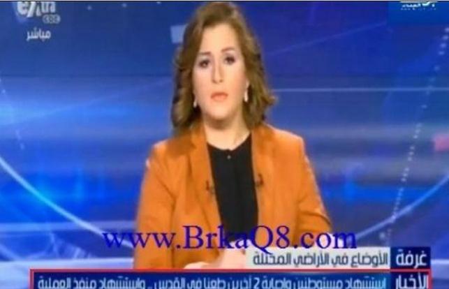 מצרים: כינו את נרצחי הפיגוע 'קדושים' והתנצלו