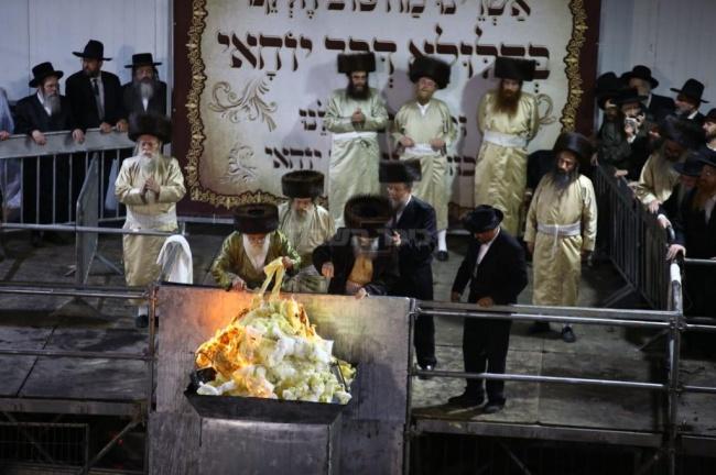 שירה הרשקופ, כיכר השבת