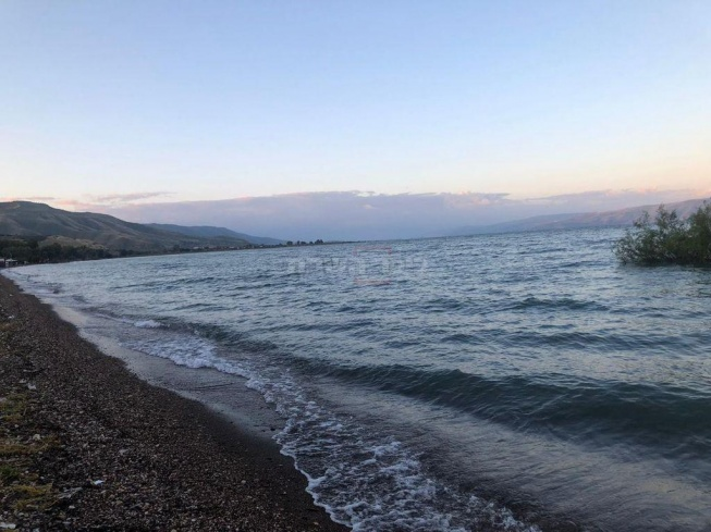 חוף דוגית בכנרת, הבוקר