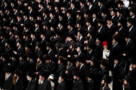 שתיתם מספיק? עכשיו תחפשו מישהו עם כובע אדום בתמונה. פורים בויז'ניץ (צילום: אמיר לוי, פלאש 90)
