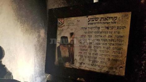 (צילום: בראל אפרים, ynet)
