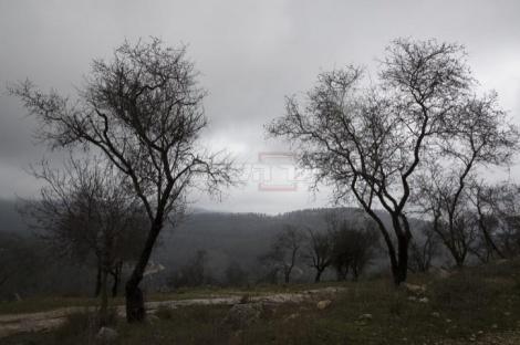 צילום: נתי שוחט, פלאש 90