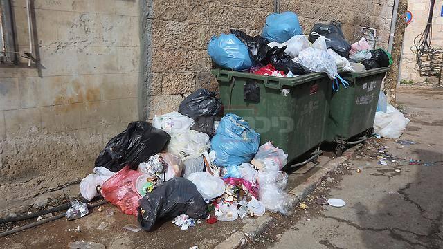 צילום: גיל יוחנן - ynet