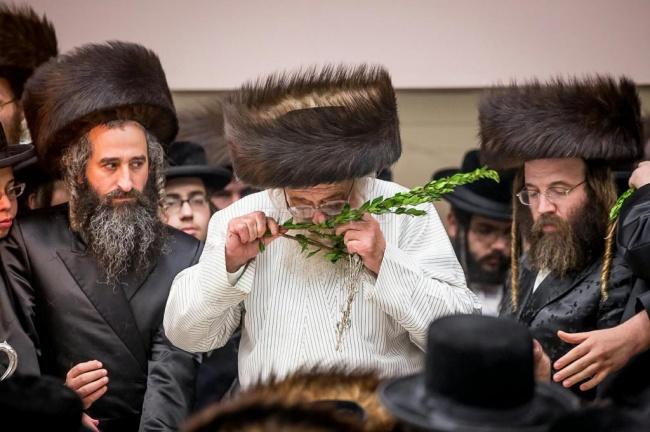 צילום: שמואל לנטשווסקי / א בליק