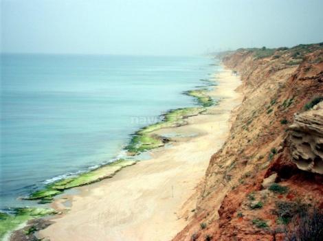 שפיים, חוף השרון